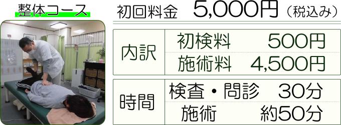 整体コースの料金 初回料金5000円